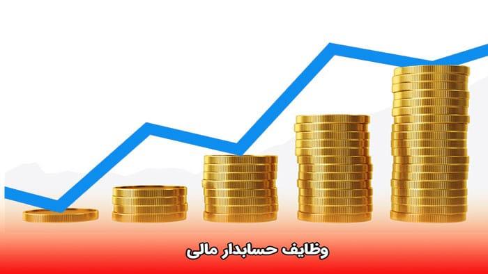 وظایف حسابدار مالی